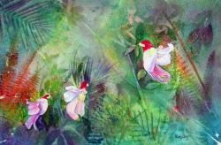 Thailand Parrot Flowers
